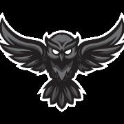 Cryptowl